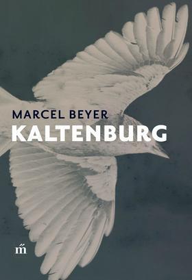 Beyer, Marcel - Kaltenburg