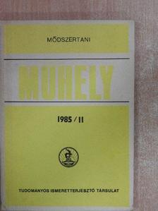 Arany Erzsébet - Módszertani Műhely 1985/II. [antikvár]