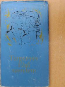 Turgenyev - Első szerelem [antikvár]