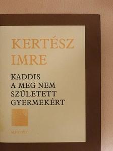Kertész Imre - Kaddis a meg nem született gyermekért [antikvár]