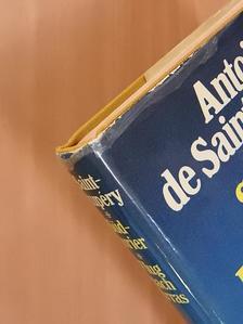 Antoine de Saint-Exupéry - Südkurier/Flug nach Arras [antikvár]