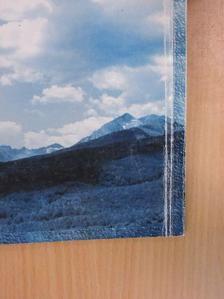 Badics László - Kék a világ [antikvár]