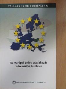 Farkas György - Az európai uniós csatlakozás felkészülési területei [antikvár]