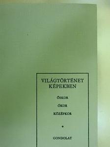 Hahn István - Világtörténet képekben I. [antikvár]