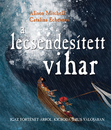 Alison Mitchell - A lecsendesített vihar