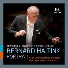 BEETHOVEN, BRUCKNER, HAYDN, MAHLER, - BERNARD HAITINK PORTRAIT11CD