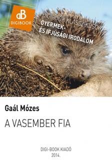 GAÁL MÓZES - A vasember fia [eKönyv: epub, mobi]