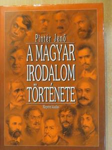Pintér Jenő - A magyar irodalom története II. [antikvár]