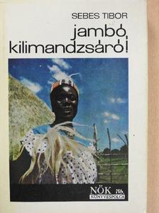 Sebes Tibor - Jambó, Kilimandzsáró! [antikvár]