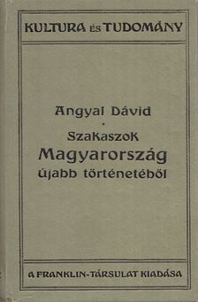 Angyal Dávid - Szakaszok Magyarország újabb történetéből [antikvár]