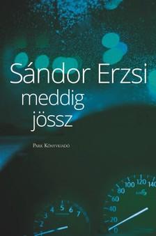 SÁNDOR ERZSI - Meddig jössz [eKönyv: epub, mobi]
