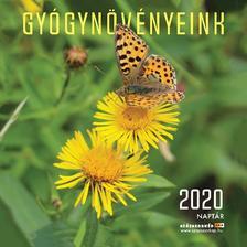GYÓGYNÖVÉNYEINK NAPTÁR 2020 22X22 cm