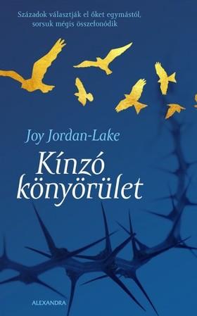 Joy Jordan-Lake - Kinzó könyörület [eKönyv: epub, mobi]