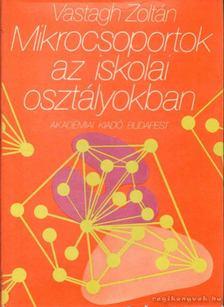 Vastagh Zoltán - Mikrocsoportok az iskolai osztályokban [antikvár]