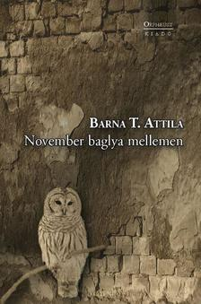 Barna T. Attila - November baglya mellemen