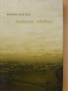 Kőrösi Zoltán - Budapest, nőváros [antikvár]