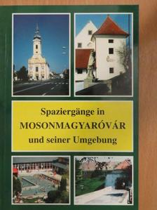 Böröndi Lajos - Spaziergänge in Mosonmagyaróvár und seiner Umgebung [antikvár]
