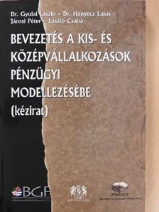 Dr. Gyulai László - Bevezetés a kis- és középvállalkozások pénzügyi modellezésébe [antikvár]