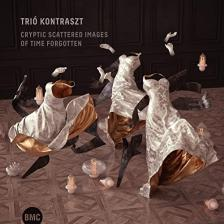 TRIO KONTRASZT - CRYPTIC SCATTERED IMAGES OF TIME FORGOTTEN CD TRIO KONTRASZT