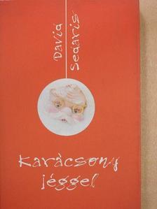 David Sedaris - Karácsony jéggel [antikvár]