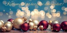 15161 - Képeslap borítékos LA/4, aranyozott, ezüstözött, zsebes, karácsonyi ZSAK18
