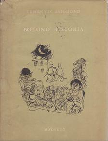 Remenyik Zsigmond - Bolond história [antikvár]