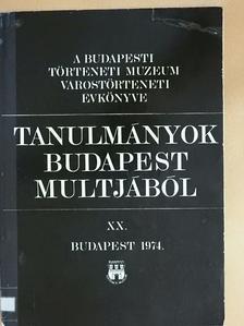 Dányi Dezső - Tanulmányok Budapest múltjából XX. [antikvár]