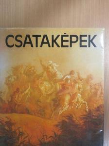 Hajdu István - Csataképek [antikvár]