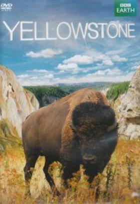 .- - Yellowstone - DVD