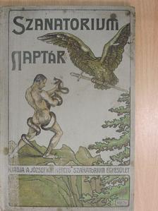 Abonyi Árpád - Sanatorium Naptár 1907 [antikvár]