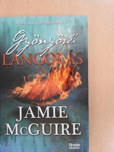 Jamie McGuire - Gyönyörű lángolás [antikvár]