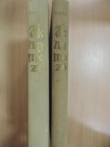 Zalka Miklós - Aknamező I-II. [antikvár]