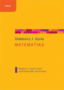 OBÁDOVICS J. GYULA - Matematika
