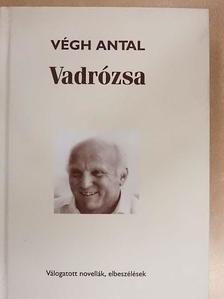 Végh Antal - Vadrózsa [antikvár]