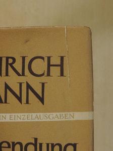 Heinrich Mann - Die Vollendung des Königs Henri Quatre [antikvár]