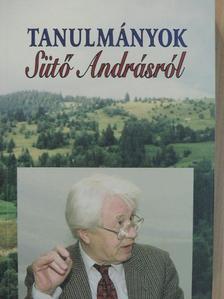 Ablonczy László - Tanulmányok Sütő Andrásról [antikvár]