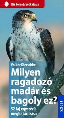 Volker Dierschke - Milyen ragadozó madár és milyen bagoly ez?