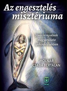 Molnár Csaba Bertalan - Az engesztelés misztériuma - Jónás könyvének magyarázata igehirdetésekben [eKönyv: epub, mobi]