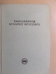 Fallenbüchl Zoltán - Tanulmányok Budapest múltjából XV. [antikvár]