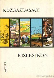 Varsádi Zsuzsa - Közgazdasági kislexikon [antikvár]