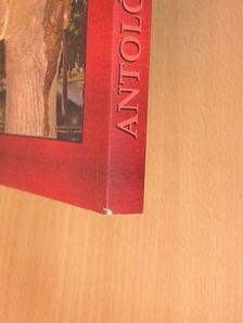Aldobolyi Nagy Etelka - Kristály antológia 2008 [antikvár]