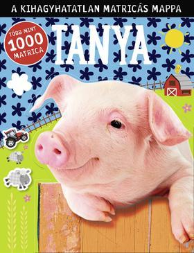 Tanya - matricás foglalkoztató, több mint 1000 matrica