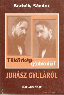 Borbély Sándor - Tükörkép Juhász Gyuláról [antikvár]