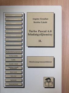 Angster Erzsébet - Turbo Pascal 6.0 feladatgyűjtemény II. [antikvár]