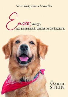 Garth Stein - Enzo [eKönyv: epub, mobi]