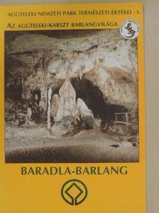 Székely Kinga - Az Aggteleki-karszt barlangvilága [antikvár]