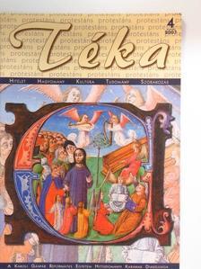 Hajdú Éva - Protestáns Téka 2007. május [antikvár]