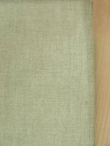 Ada Negri - Idegen költők [antikvár]