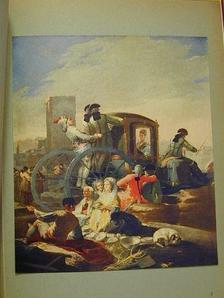 Kálmán Mária - Goya [antikvár]
