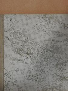 Bihari Sándor - Vándor, neonfényben [antikvár]
